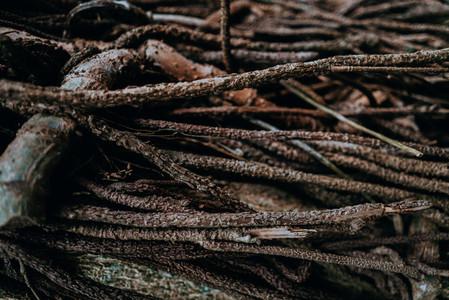 Natural Image Textures 20