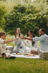 Group of friends celebrating with drinks at picnic
