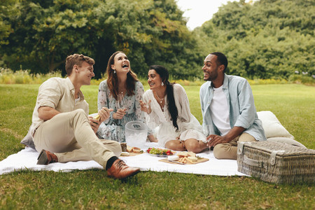Group of friends having fun on the picnic at the park