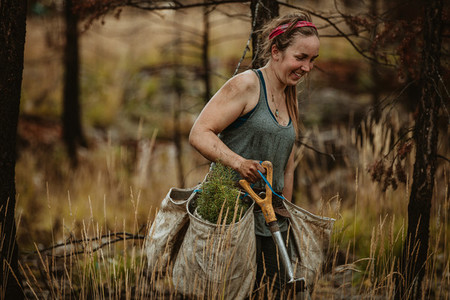 Female forest ranger planting new trees