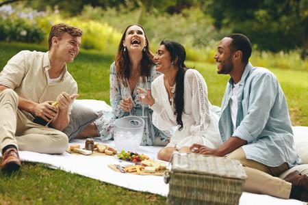 Friends enjoying a luxury picnic