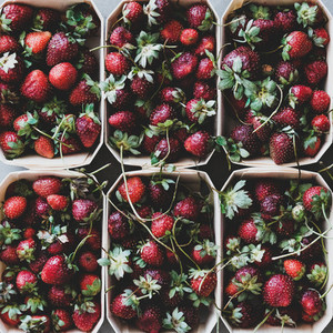 Fresh strawberries in boxes texture  background and wallpaper  square crop
