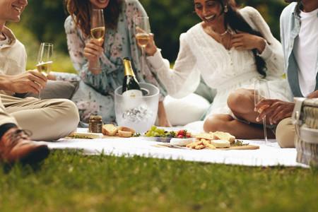 Friends having picnic at park