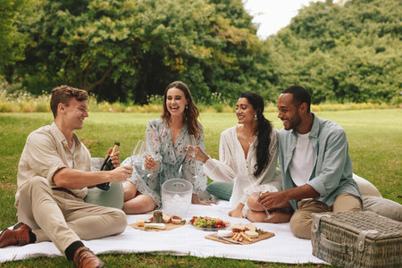 Group of friends having  a luxury picnic party