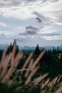Natural Environments 7