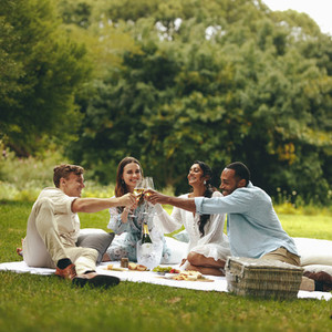 Friends having champagne at the picnic