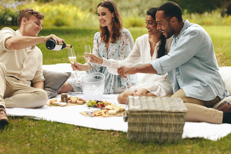 Group of friends having champagne at a high end  picnic