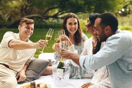Friends on picnic having champagne