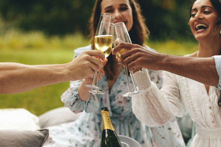 Friends celebrating with champagne at picnic