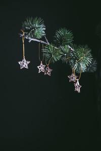Golden mini stars Christmas decoration on a fir branch
