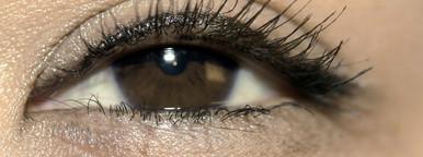 Woma s Eye  Brown