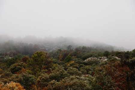 clouds and mists in bad weather in autumn in the forests of the Araitz valley Navarra