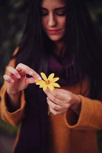 Young woman picks yellow flower Petals in the field
