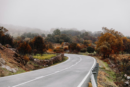 Regional road going through a forest in autumn in madrid spain