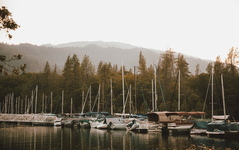 Sailboats moored in lake harbor Whiskeytown USA