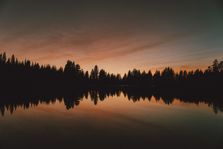 Majestic sunset over silhouetted forest trees USA