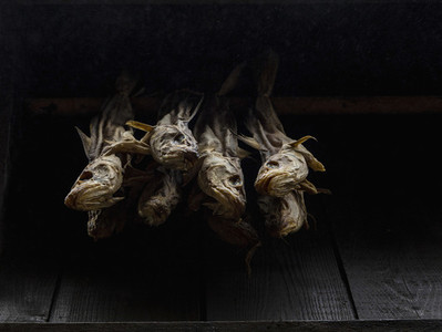 Dried fish on black background