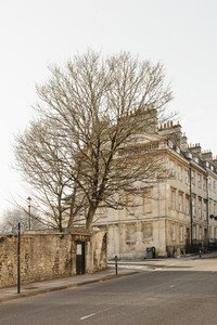 Bare tree and buildings along sunny empty street Bath Somerset UK