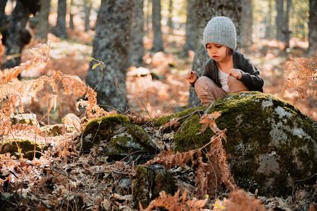 Little girl in an autumn forest among ferns