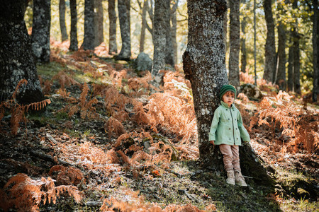 Little girl in an autumn forest among ferns
