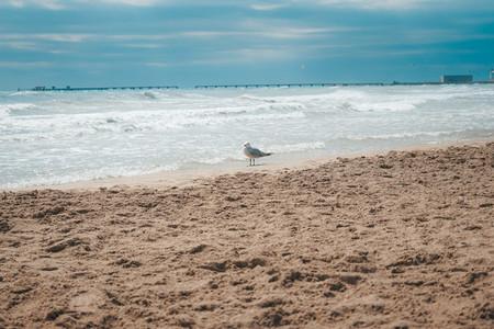 Beautiful seascape in Canet de Berenguer  Valencia