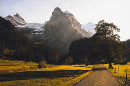 Grosse Scheidegg Pass 02