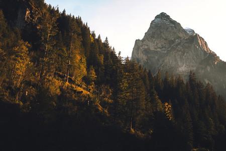 Grosse Scheidegg Pass 08