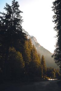 Grosse Scheidegg Pass 09