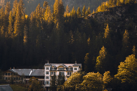 Grosse Scheidegg Pass