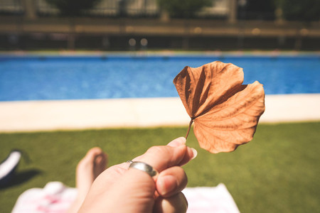 Hand holding a dry leaf near a swimming pool