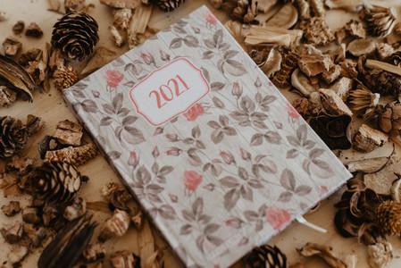 2021 agenda with dried fruits around