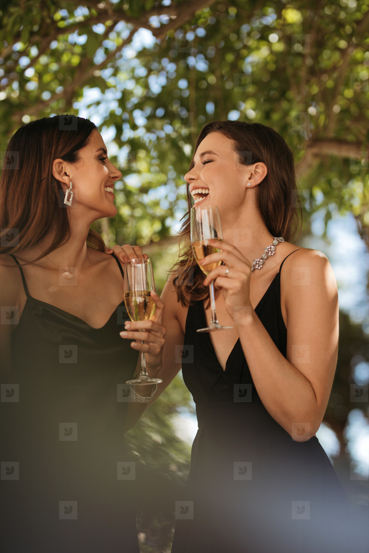 Two women enjoying at outdoor party