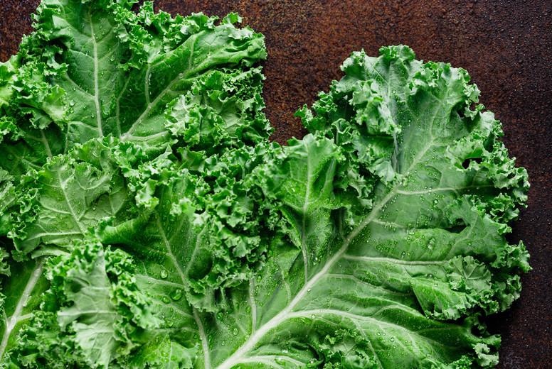Fresh curly kale salad over dark rustic background