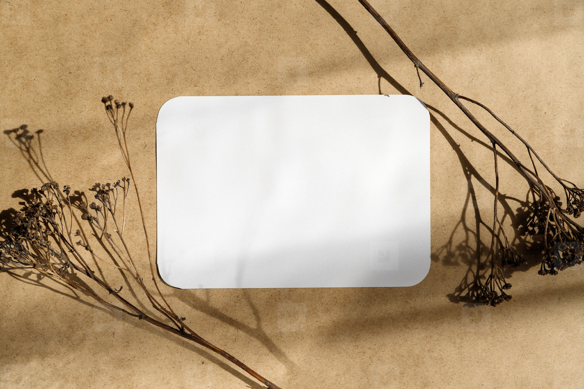 Blank paper sheet on a kraft paper with dry grass  Minimalist toned background