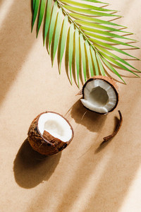 Summer abstract creative composition with coconut and palm leaf over kraft paper