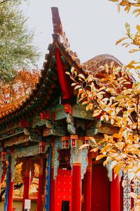 Fall in China Garden  Zurich  Sw 4