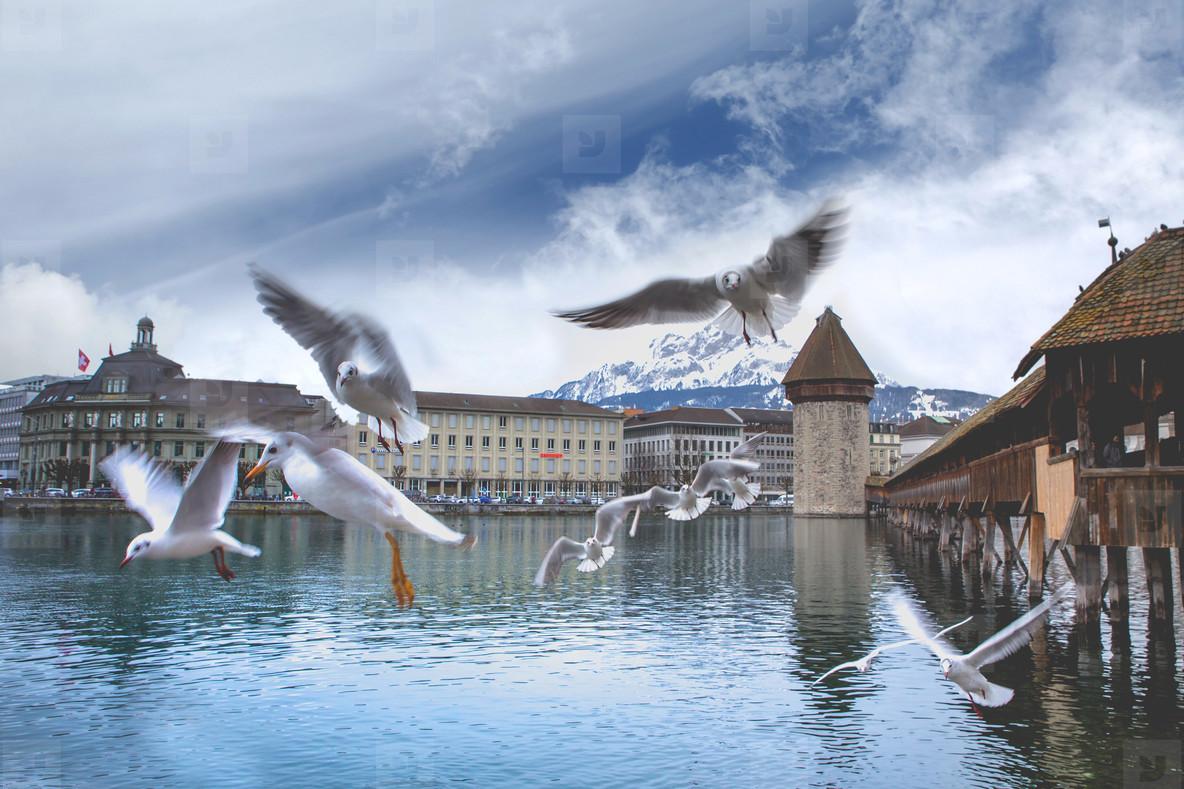 Luzern  Switzerland 5