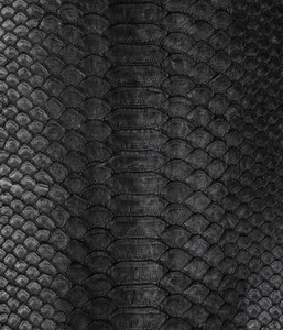black texture from natural python