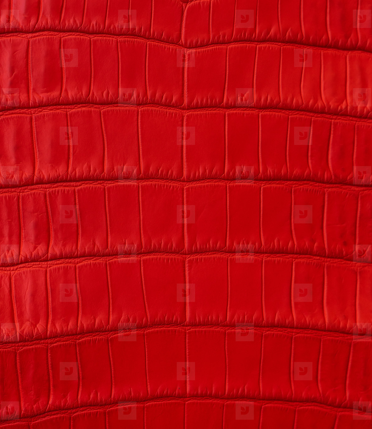 background from red crocodile texture
