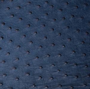 ostrich skin in blue color