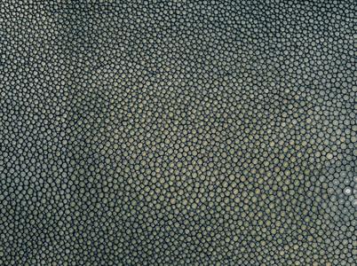 Dark green electric beam texture