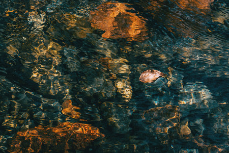 A dried fallen leaf floating on the undulations of the water in a river