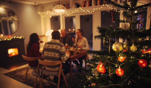 Family having Christmas eve dinner