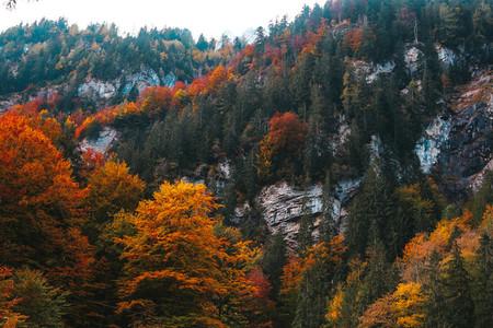 Blausee lake  Switzerland 3