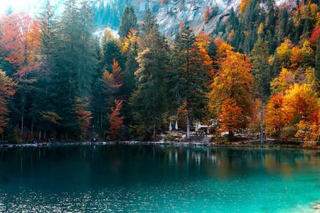 Blausee lake  Switzerland 4