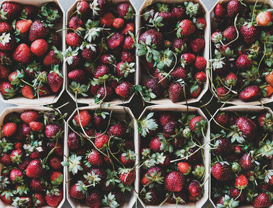 Fresh strawberries in boxes texture  background and wallpaper