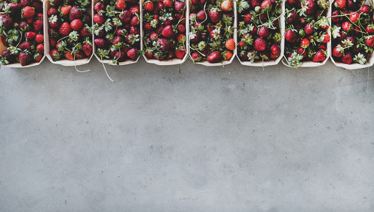 Fresh strawberries in plastic free boxes over grey concrete background