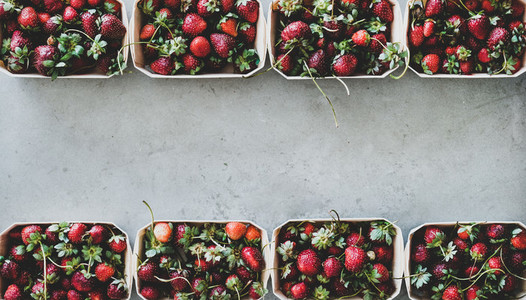 Fresh strawberries in plastic free containers over concrete background copy space
