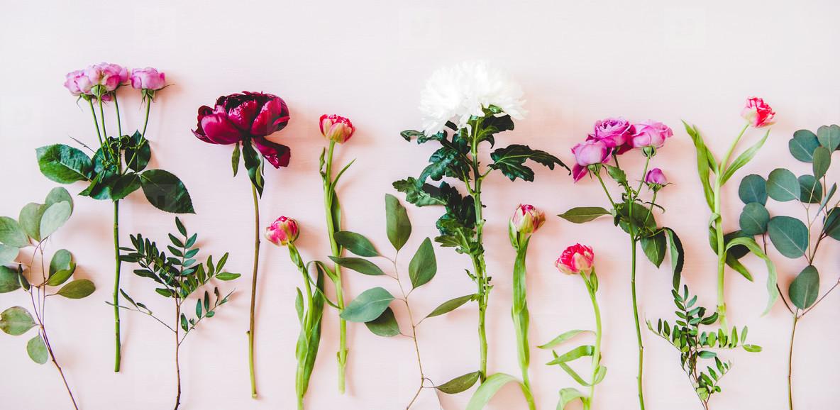 Flat lay of purple peonies  pink roses  tulips  chrisanthemums  copy space