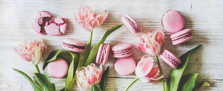 Pink macaron cookies and spring fresh tulip flowers wide composition